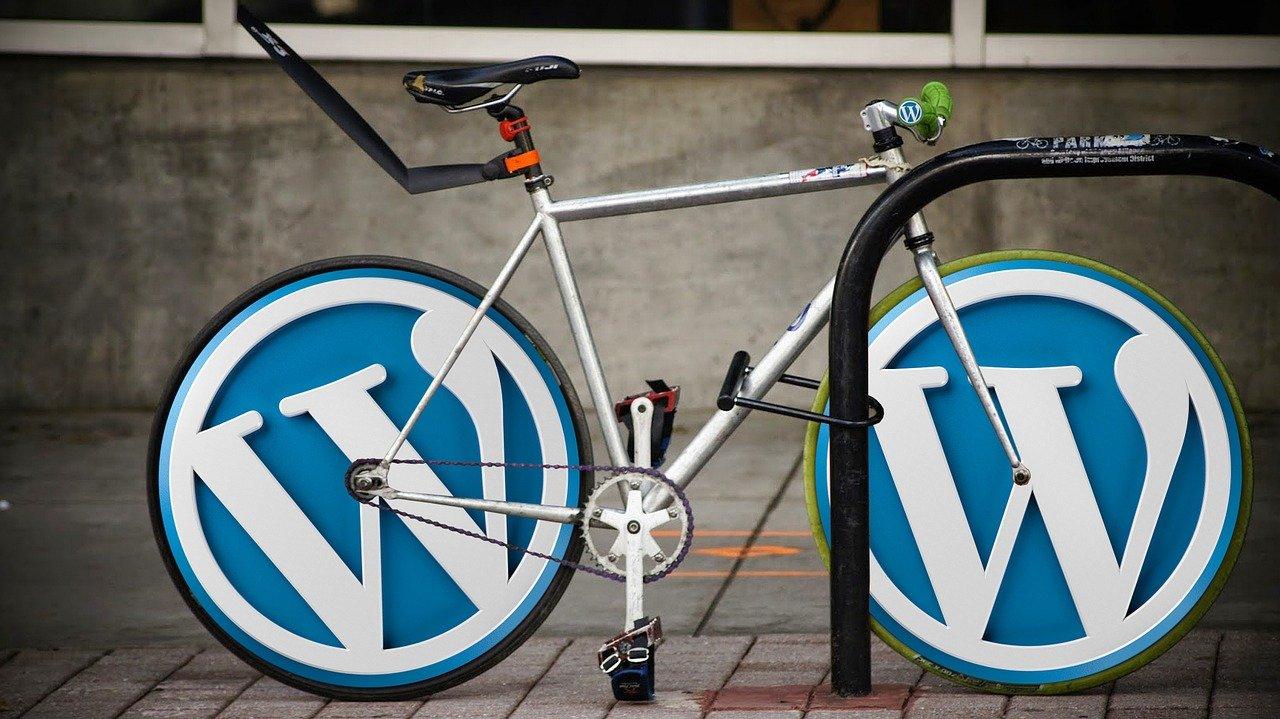 Référencement naturel WordPress Référenceur Google