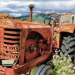 Projet agricole très intéressant et très rentable : les micro-fermes ont un très grand avenir!
