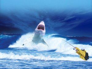 whaling attack ou whaling phishing et comment se protéger efficacement des attaques ?